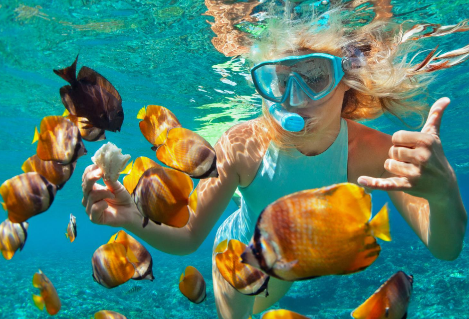Ultimate Guide To Buying The Best Snorkeling Gear