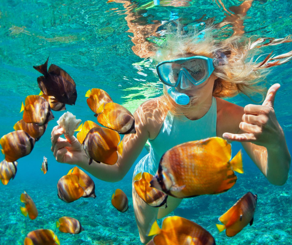 Ultimate Guide To Buying The Best Snorkeling Gear - Go ...