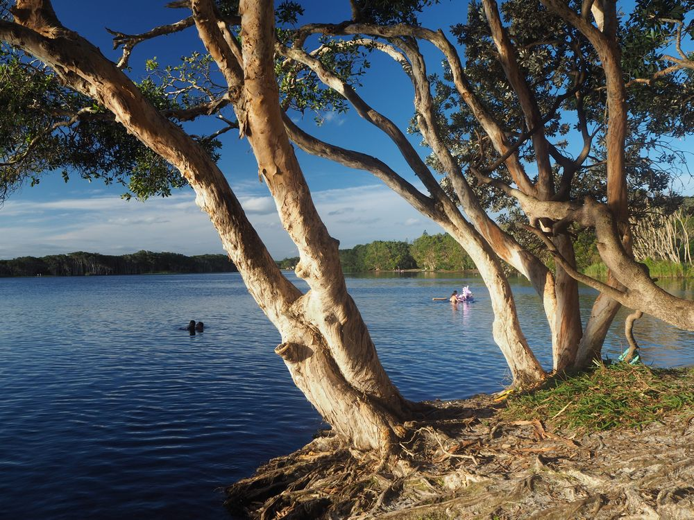 The Best Camping Spots in New South Wales, Australia.