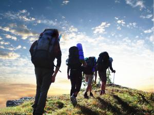 Ultimate Guide To The Best Hiking Backpacks Australia - Travel Australia